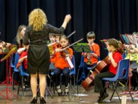 Orchestras, Bands & Instrumental Groups